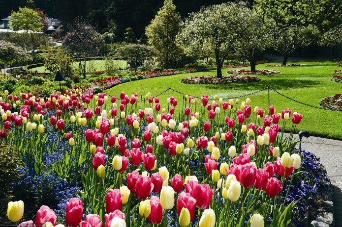 springtime-001